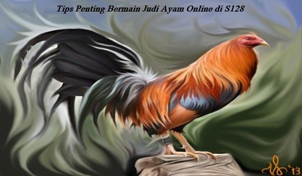 Tips Penting Bermain Judi Ayam Online di S128